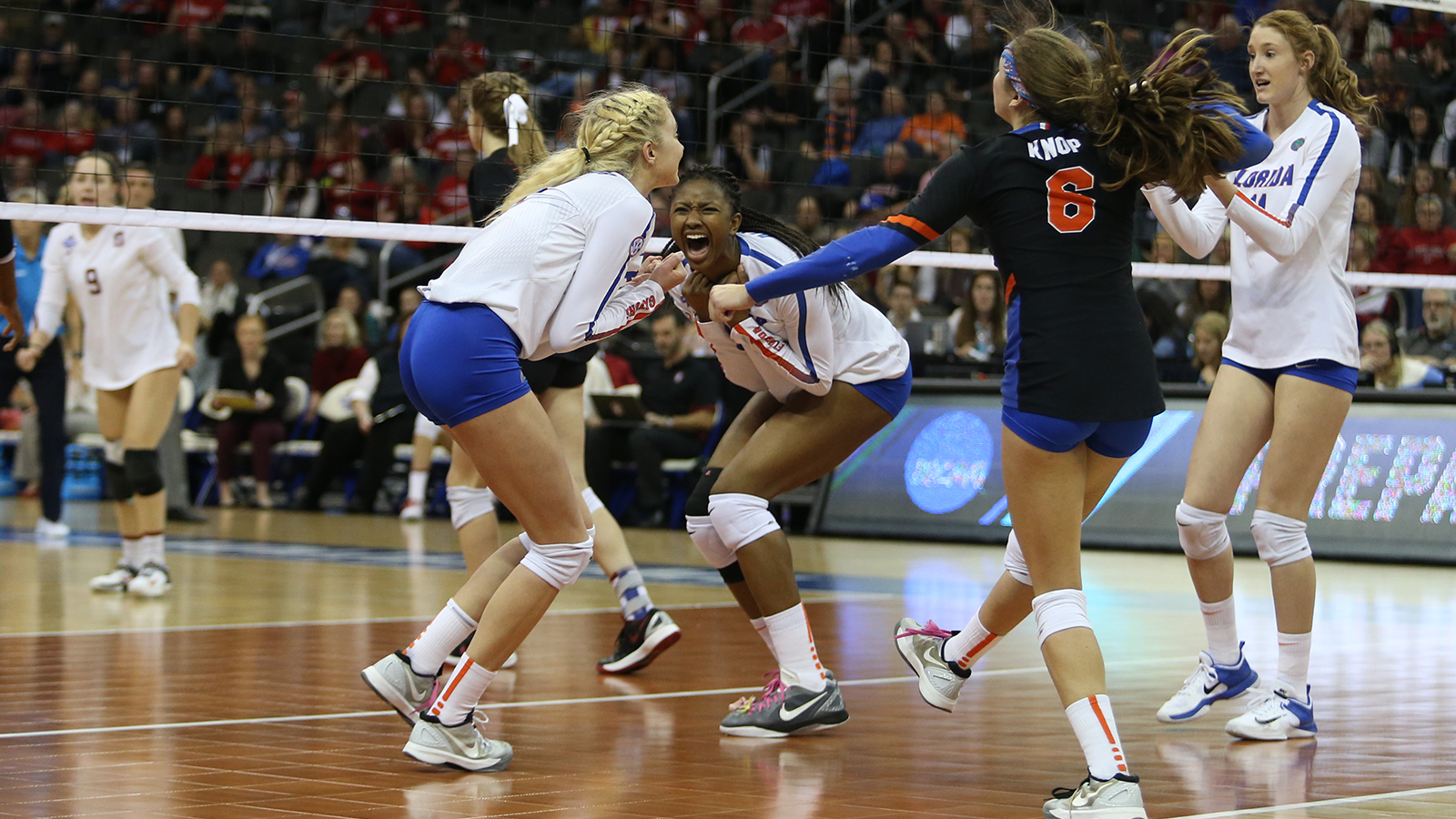 Gators Fend Off Stanford, Advance to NCAA Championship