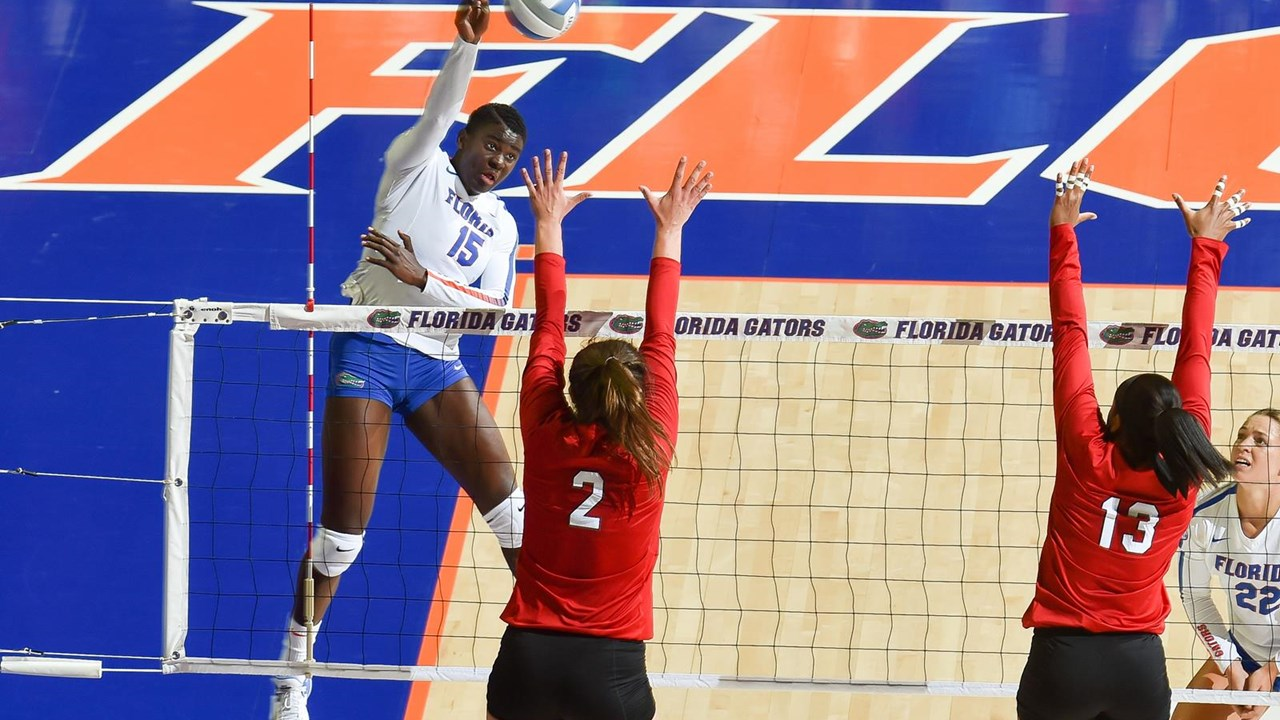 Joseph To Compete In Intercontinental Olympic Volleyball Qualification Tournament Florida Gators